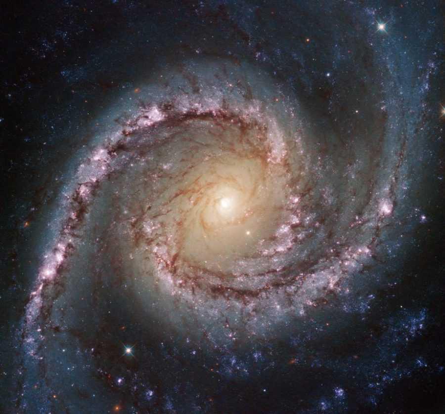 Спиральная галактика NGC 1566